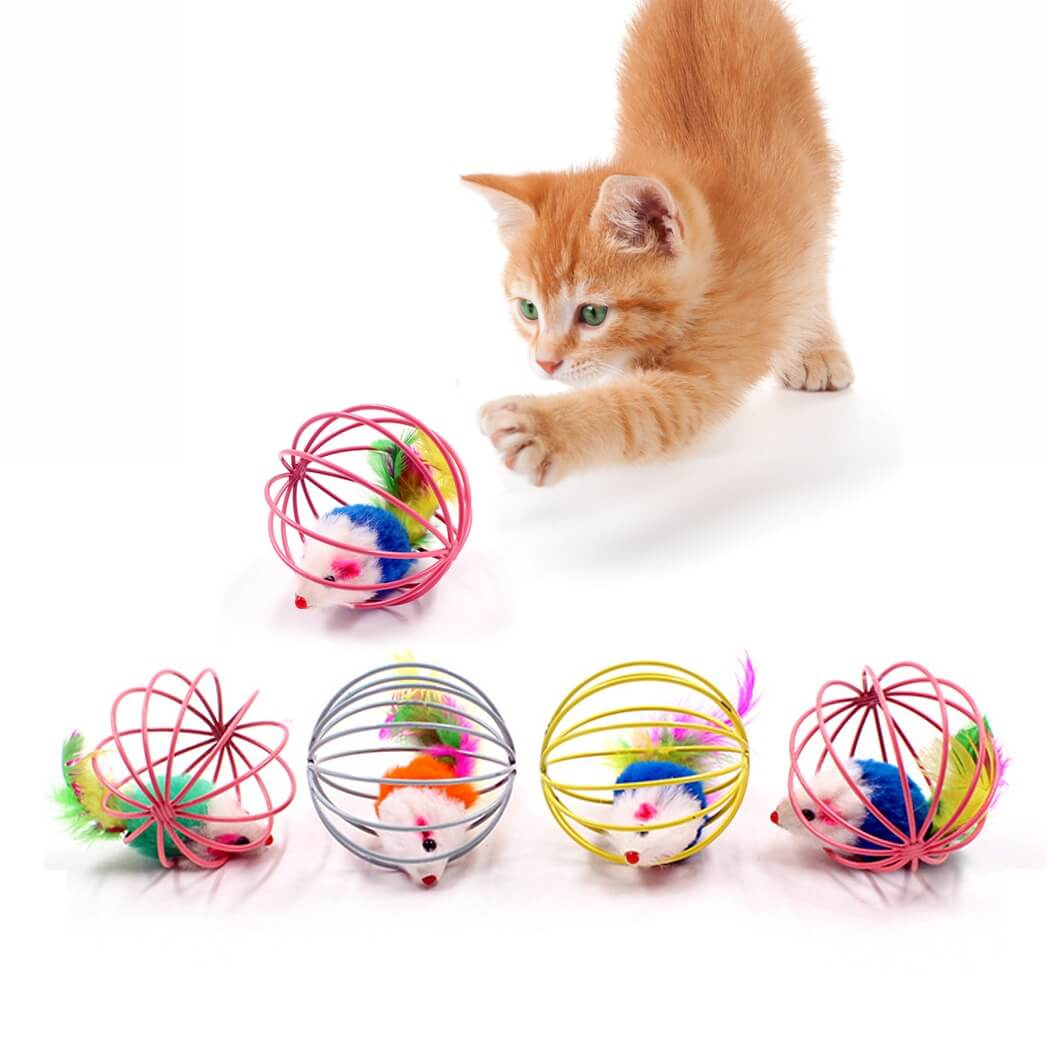 Buy Interactive Rolling Feather Cage Cat Toy Kampala Uganda