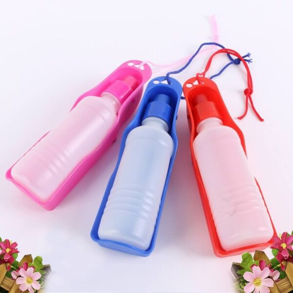 Best Foldable Outdoor Dog Water Bottle For Travelling